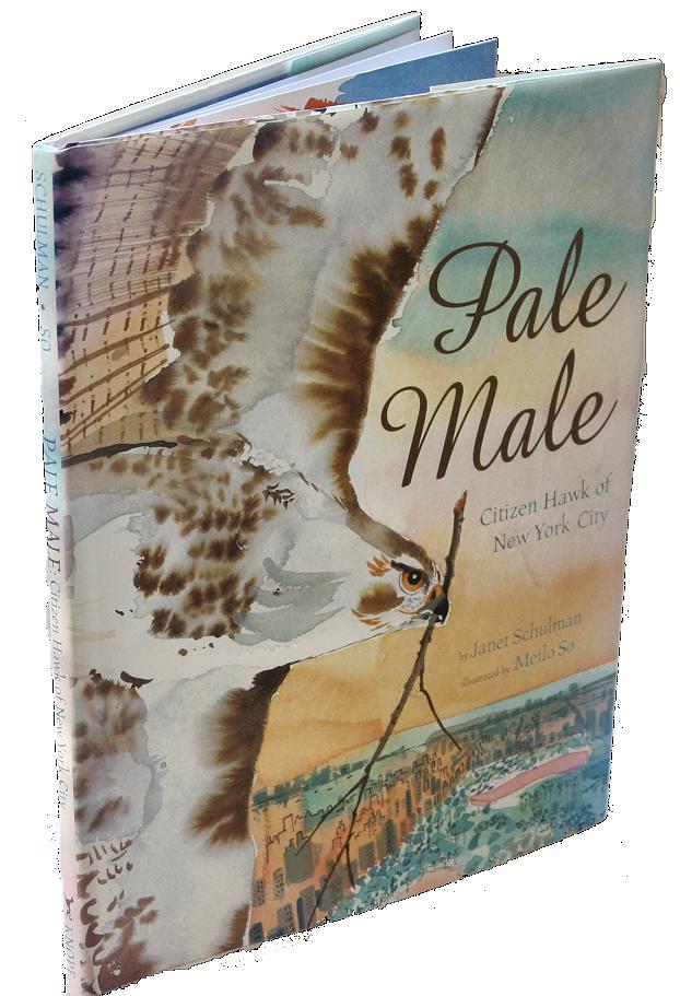 books white- pale male
